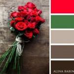 18-paleta cromatica formata din rosu verde si diverse nuante de gri
