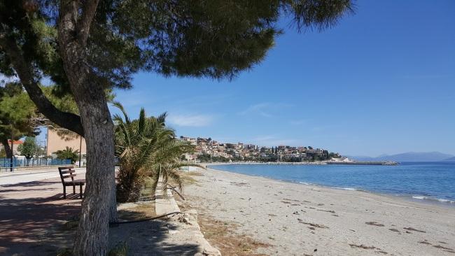 19-palmieri si pini pe faleza din satul Paralio Astros