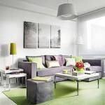 2-accente-cromatice-verde-deschis-in-amenajarea-unui-living-modern