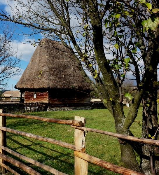 2 casa lemn acoperis fan
