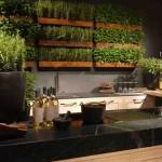 2-decor din plante aromatice decor perete bucatarie