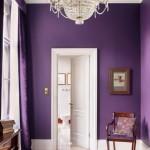 2-hol cu peretii zugraviti in violet usi si plinte albe