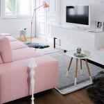 2-living mic decorat in alb si roz