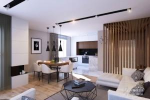 2-living modern open space apartament modern 76 mp