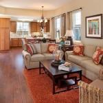 2-living separat de bucatarie cu ajutorul unei canapele