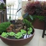 2-mic helesteu decorativ intr-un vas de ceramica pentru curte mica