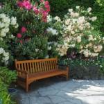 2-model bancuta din lemn intr-o gradina cu trandafiri