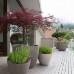 2-modele de ghivece mari din beton decor terasa moderna
