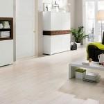 2-parchet albit decor living modern