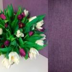 2-tapet decorativ violet textura ce imita tencuiala decorativa
