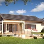 2-vedere spate proiect casa doar parter cu garaj si suprafata locuibila 80 mp