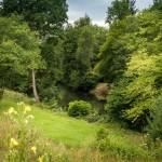 20-raul Tamar si imprejurimile casei mici din piatra din Cornwall Marea Britanie
