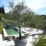 23-mini piscina curte ferma ecologica