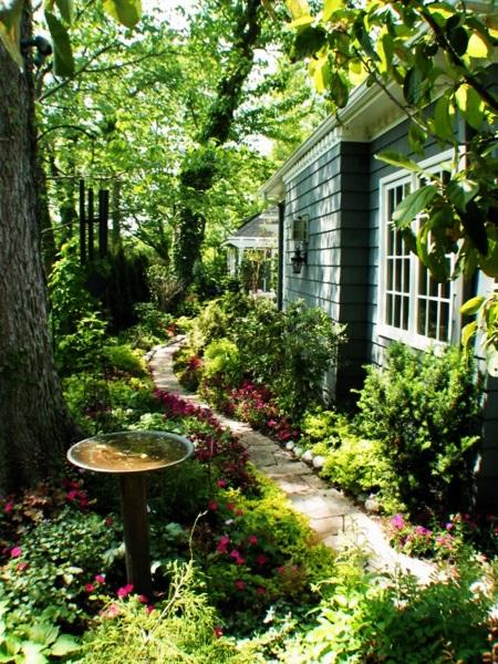 3-curte frumoasa plina de verdeata si flori