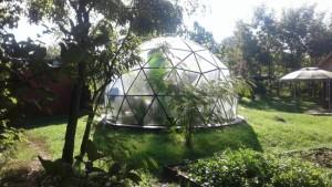 3-dom geodezic mic in calitate de sera construit in ROmania Biodomes
