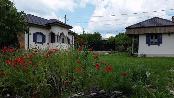 doua case romanesti vechi restaurate Arges
