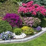 3-exemplu asortare si grupare a florilor si arbustilor de gradina