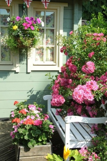 flori bogate langa bancuta din curte