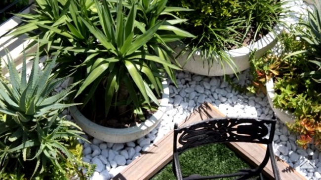 ghivece plante decor pietris alb balcon