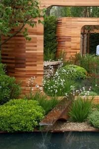 3-irisi de balta albi plantati pe malul unui iaz ornamental de gradina