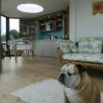 3-living bucatarie si loc de luat masa casa din module hexagonale tip fagure Hivehaus