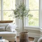 3-maslin intr-un cos de nuiele decor de inspiratie mediteraneana living
