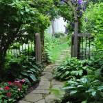 3-pergola arcuita cu planta cataratoare decor gradina cu aer romantic