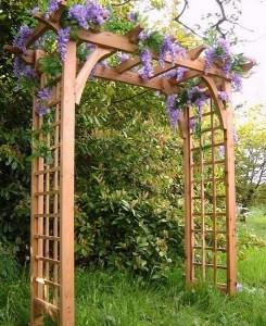 3-pergola din lemn pentru gradina cu glicina inflorita