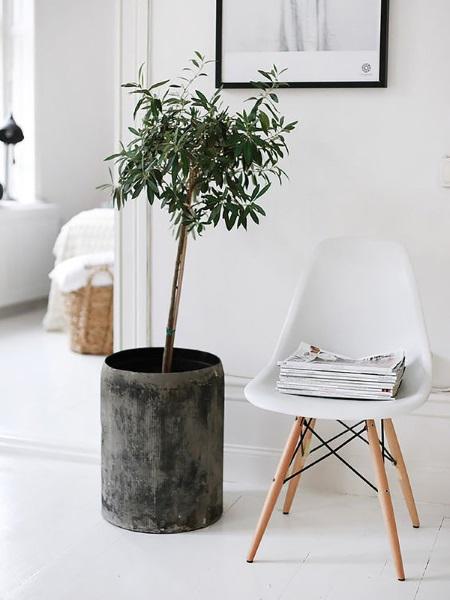 3-scaun-eames-alb-in-amenajarea-holului