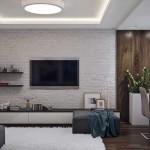 3-televizor living montat pe perete placat cu caramida aparenta
