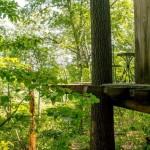 3-terasa suspendata cabana lemn construita cu 4000 euro