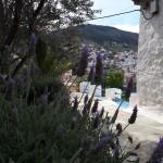 30-lavanda inflorita pe o straduta insula Hydra Grecia