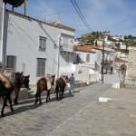 39-singura strada lata de pe insula Hydra Grecia