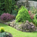 4-amenajare gradina mica cu flori plante si arbusti