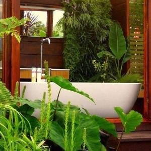 4-baie moderna decorata cu plante verzi