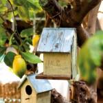 4-casute pentru pasari gradina casa veche restaurata oras spania