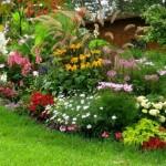 4-exemplu de grupare a plantelor si florilor in gradina