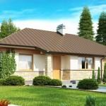 4-fatada proiect casa parter suprafata locuibila 81 mp cu garaj