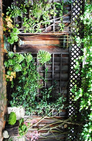 4-idee amenajare curte in zona gardului cu plante verzi