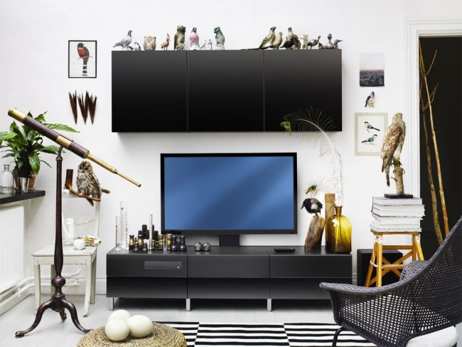 4-mobilier minimalist living mic culoare neagra