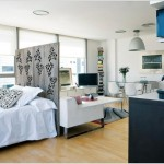 4-paravan despartitor lemn intre living si dormitor open space