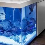 4-prim plan insula bucatarie cu acvariu integrat creatie robert kolenik