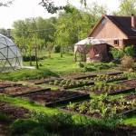 4-sera de legume in forma de dom geodezic Biodomes