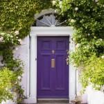 4-usa violet la intrarea intr-o casa alba