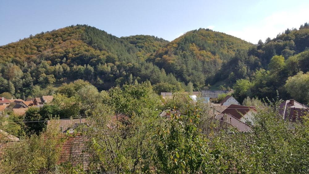 4 vedere sat din gradina