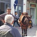 42-proprietarul unui magar de vorba cu un vecin insula Hydra Grecia