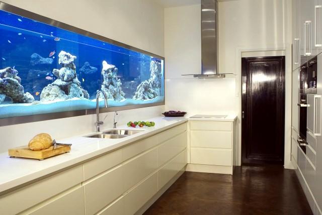 5-acvariu integrat in peretele din zona blatului de lucru din bucatarie