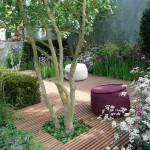 5-amenajarea si decorarea unei gradini mici cu flori albe si mov