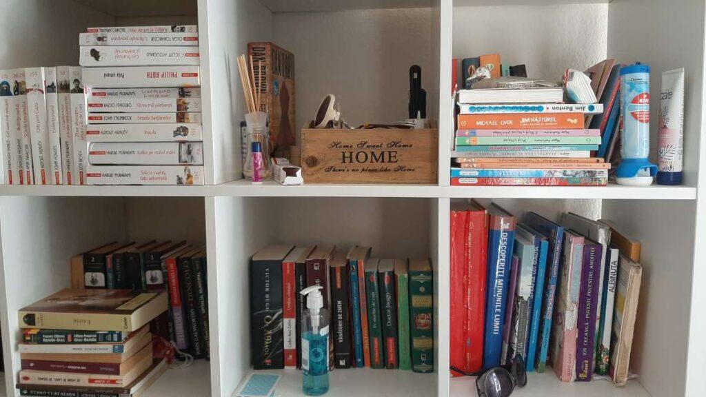5-biblioteca-carti-incarcata-maruntisuri