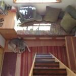 5-canapea pat cu spatii de depozitare living mic casa mobila din lemn
